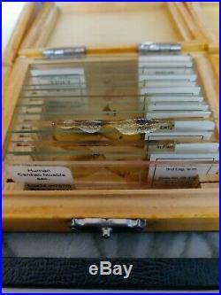 215 Prepared Vintage Microscope Slides Wood Boxes Various Kinds School Home