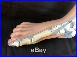 Antique Vintage anatomic foot model