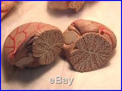 Brain Anatomical Model Vintage Made in West Germany, $1,201. New