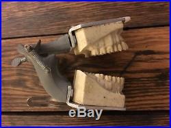 Vintage 1972 Columbia Dentoform Typodont Dental manikin TEETH & dental Shroud