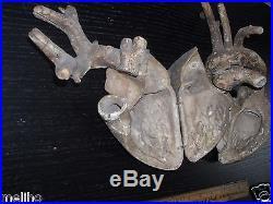 Vintage Anatomical/ Paper Mache Heart Model/Auzoux Style