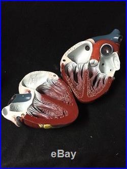 Vintage Nystrom GIANT Heart Model